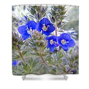 Tiny Blue Floral Shower Curtain