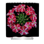 Tiny Bunch Of Red And Pink Flowers Shower Curtain