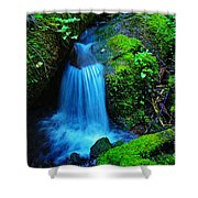 Tiny Falls Shower Curtain