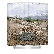 Tiny Mountain Blooms Shower Curtain by Margaret Pitcher