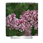 Tiny Pink Flowers Shower Curtain