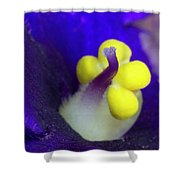 Tiny Pistil Shower Curtain