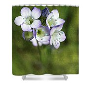 Tiny Purple And Blue Shower Curtain