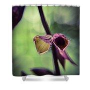 Tiny Purple Flower Shower Curtain