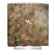 Tiny Red And White Wildflowers Shower Curtain