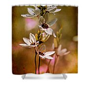 Tiny Spring Blooms Shower Curtain
