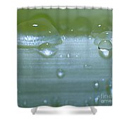 Tiny Water Drops On Stipe Shower Curtain