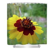 Tiny Yellow Flower Shower Curtain