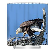 Tip Toeing Across Nest Shower Curtain