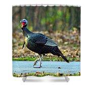 Tiptoe Turkey Trot Shower Curtain