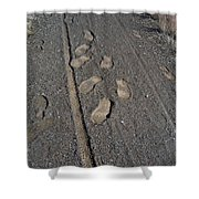 Tire Tracks And Foot Prints Shower Curtain