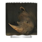 Tired Rhino Shower Curtain