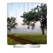 Tireen 2am-001412 Shower Curtain
