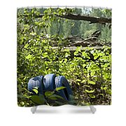 Tires Blue Shower Curtain