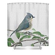 Titmouse Shower Curtain