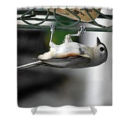 Titmouse Trickery Shower Curtain