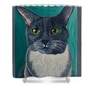 Titter, Cat Portrait Shower Curtain