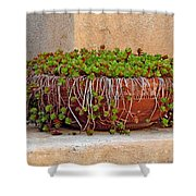 Tlaquepaque Potted Greens Shower Curtain