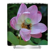 To Bee A Flower Shower Curtain
