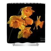 To Hold In Your Heart Shower Curtain
