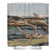 To The Impossible Dream Shower Curtain