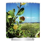To The Sky Gp Shower Curtain
