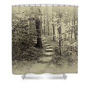 To The Throne Shower Curtain