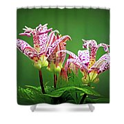 Toad Lilies Shower Curtain