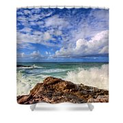 Toco Blues Shower Curtain