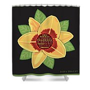 Today, The Gift Shower Curtain