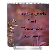 Todays Seeds Paint Tomorrows Rainbows Shower Curtain