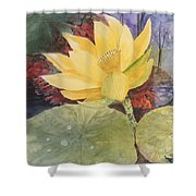 Tohopekaliga Lotus 2 Shower Curtain