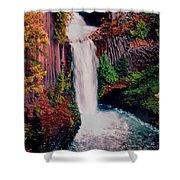 Tokeetee Falls Shower Curtain
