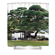 Tokyo Tree Shower Curtain
