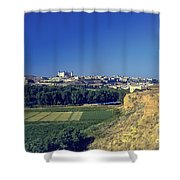 Toledo City Shower Curtain