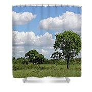 Tolworth Court Nature Reserve In Surrey Shower Curtain