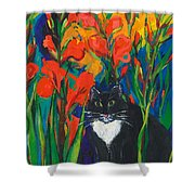 Tom And Gladioli Shower Curtain