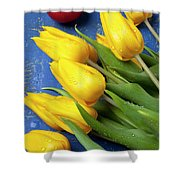 Tomato And Tulips Shower Curtain