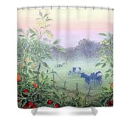 Tomatoes In The Mist Shower Curtain