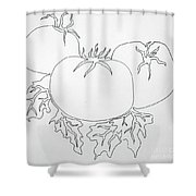 Tomatoes On A Vine In One Line Shower Curtain