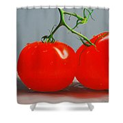 Tomatoes With Stems Shower Curtain