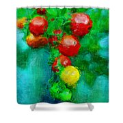 Tomatos Shower Curtain
