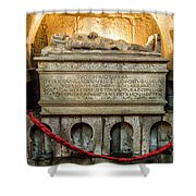 Tomb Of Dom Henrique Shower Curtain