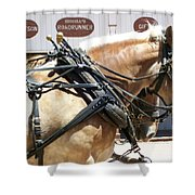 Tombstone Horse Shower Curtain