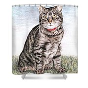 Tomcat Max Shower Curtain