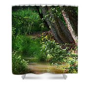 Toms Creek In Late Summer Shower Curtain