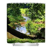 Toms Creek In Summer 1 Shower Curtain