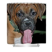 Tongue Lasher Shower Curtain