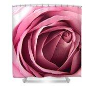 Toni's Rose  Shower Curtain