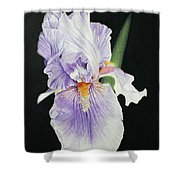Tonto Basin Iris Shower Curtain